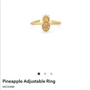 Alex and Ani Pineapple Ring